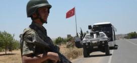 تركيا…حليف المتردد