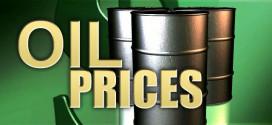 اوبك تتوقع زيادة الطلب على النفط في 2016