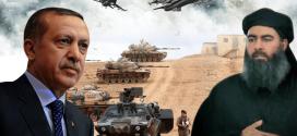 أردوغان والمواجهة مع تنظيم الدولة الاسلامية