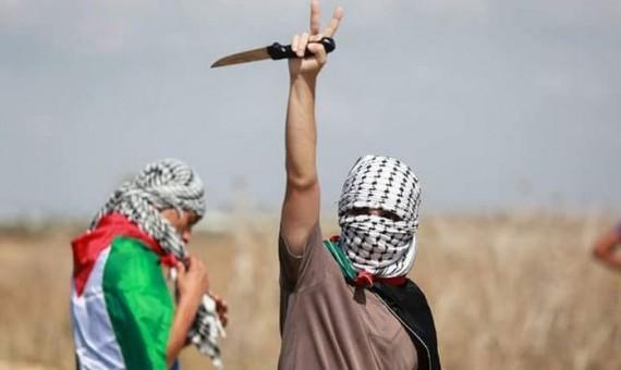عودة الروح إلى النضال الفلسطيني