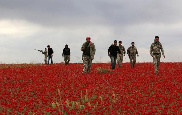 SyriaRebelsWalkFlowersRTR3KZ4I-639x405