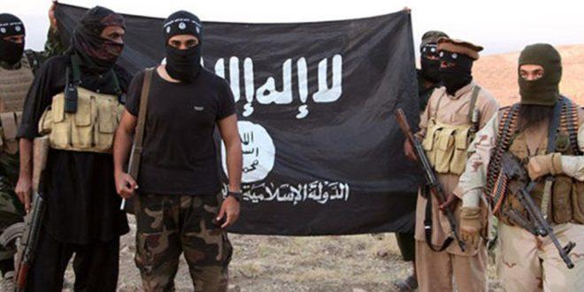 في ظل هذا المشهد تُـجرى جهود «صادقة» لهزم «داعش»!