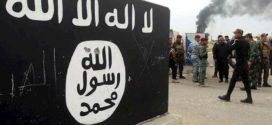 """محطات بديلة:  المسارات المحتملة لاستعادة نفوذ """"داعش"""" في الشرق الأوسط"""