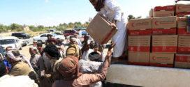 الدور الإماراتي الإنساني في اليمن: المبادئ والسمات