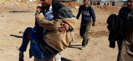 تزايد الضغوط يجبر الحكومة العراقية على وقف هجوم الموصل