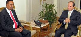 أديس أبابا تجس نبض القاهرة قبيل إعلان نتائج دراسات سد النهضة