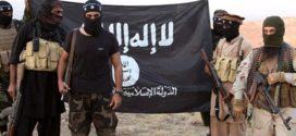 متلازمة «داعش».. القوة في الضعف