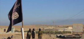تحرير الرقة لن يؤدي إلى الاستقرار في سورية