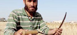 دعوات لإنشاء بنوك للبذور لحماية التراث الزراعي السوري