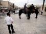 إسرائيل تستقدم 400 يهودي من اليمن بمساعدة «دولة عربية مجاورة»