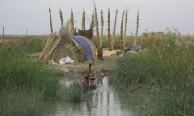الحياة تعود لشرايين أهوار العراق