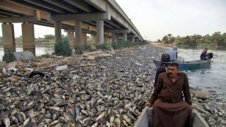 معركة كسر عظم في البرلمان العراقي على حقيبتي الدفاع والداخلية