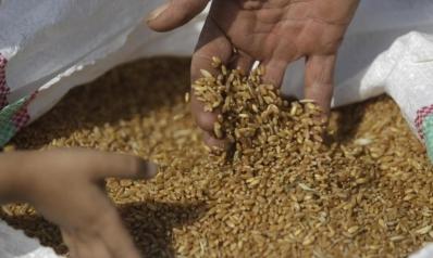 تجار: مصر تؤخر خطابات ضمان لشحنات القمح