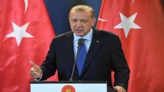 أردوغان: تركيا ستتولّى تشكيل المنطقة الآمنة شمالي سورية