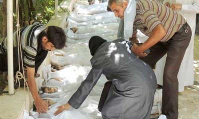 سوريا: الممثلة الكيميائية والنظام البريء!