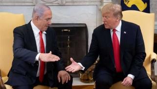 «السياسي العضوي» وأوروبا والاستشراس على قضيتنا الفلسطينية