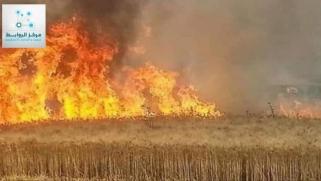 احراق مزارع القمح والشعير أجندات خارجية تسعى لتدمير الاقتصاد الوطني العراقي  .