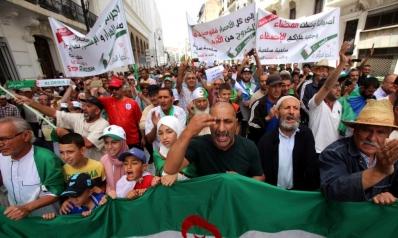 المرحلة الانتقالية.. هل تكون القشّة التي تقصم حراك الجزائر؟
