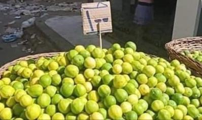 """""""العملة"""" الأغلى بمصر.. مغردون يتساءلون هل ينقرض الليمون قريبا؟"""