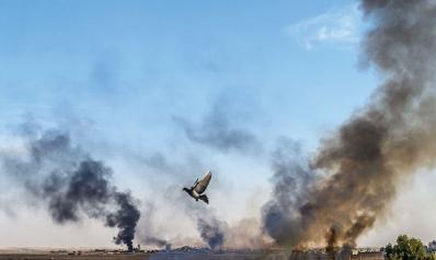 كرد سوريا بين الانسحاب الأمريكي والتدخل التركي
