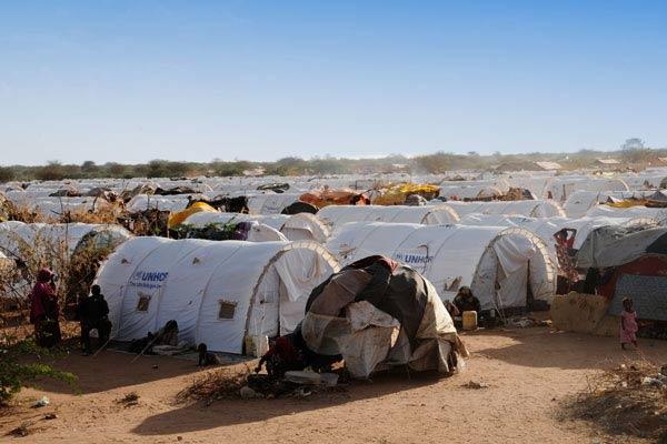 رقم قياسي للنازحين واللاجئين في العالم لعام 2014