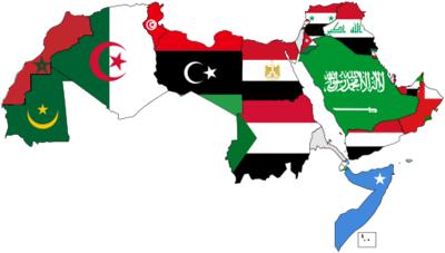 الدولة العربية في السلم والحرب