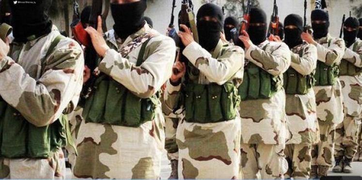 كيف تفكّر العقول الإرهابية