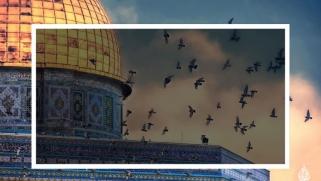 القدس ونظام العبيد