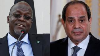 """السيسي يبحث مع الرئيس التنزاني تطورات سد """"ستيغلر جورج"""""""