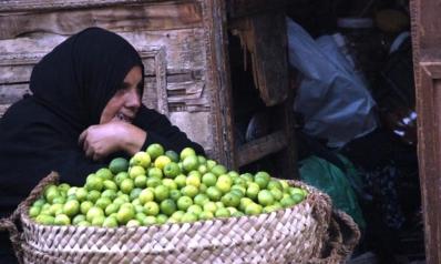مصر 2019.. ارتفاع الأسعار باقٍ