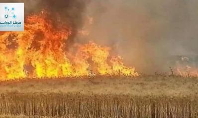 احراق مزارع القمح والشعير أجندات خارجية تسعى لتدمير الاقتصاد الوطني العراقي