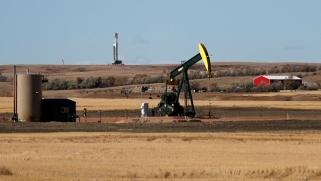 لا تحكم على إنتاج النفط الأمريكي في تشكيل السوق