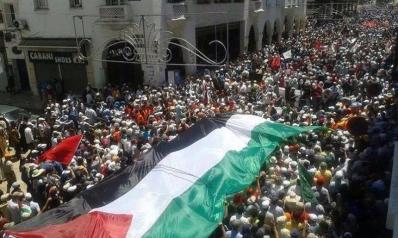 هل ما زالت فلسطين القضية المركزية؟