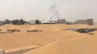 العراق يعلن تحقيق الاكتفاء الذاتي من القمح