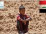 الأمن الغذائي في العراق.. أخطر الكوارث وأطولها