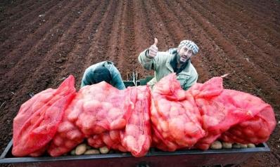 وحدات التصنيع الغذائي توفر العشرات من فرص العمل في أرياف سوريا