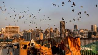 لا مصلحة لأي طرف محلي أو دولي في كشف قصة تفجير مرفأ بيروت
