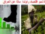معجزة رواندا: يعجز العراق النفطي عن محاكاة اقتصادها الزراعي لتصبح من اقوى  اقتصادات  العالم ( ماذا حدث )