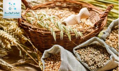 ازمة الغذاء تربك العالم وتهدد الأمن القومي العربي